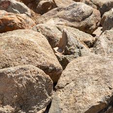 Garden and Field Stones